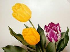 Florilegium Harlemense