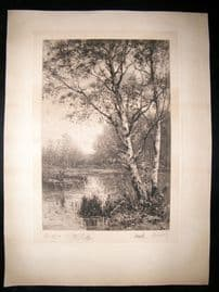 A. Gravier after James Grace 1883 LG Folio Signed Etching. Birch Trees