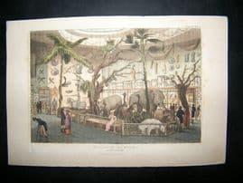 Ackermann C1810 Hand Col Print. Bullock's Museum, Piccadilly, London