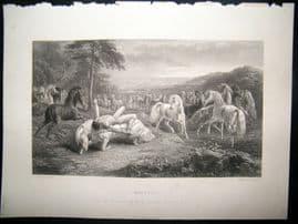 After John Frederick Herring 1865 Antique Print, Mazeppa Horse Print, Art Journal