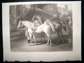 After John Frederick Herring C860 Steel Engraving, The Queens Horses