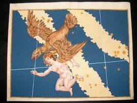 Bayer Uranometria 1661 Folio Hand Col Celestial Map. Aquila 16