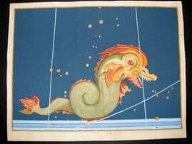 Bayer Uranometria 1661 Folio Hand Col Celestial Map. Piscis Notius Austrinus 48