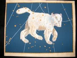 Bayer Uranometria 1661 Folio Hand Col Celestial Map. Ursa Major 2 Astrology