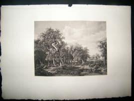 Boussod & Valadon after Meindert Hobbema 1885 Photogravure. Woodland Landscape