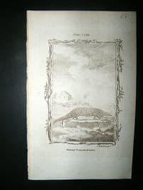 Buffon: 1785 Short Tailed Manis, Antique Print