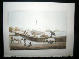 Ceylon Perry Expedition 1856 Antique Print. Light House, Point de Galle