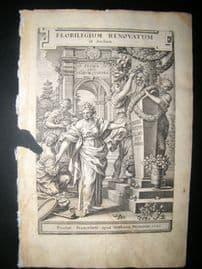 de Bry Florilegium Renovatum 1641 Botanical, Classical Engraved Title Page