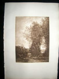 Dujardin after Corot 1885 Photogravure. Wood and Lake