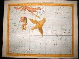 Flamsteed 1781 LG Folio Hand Col Celestial Map. Aquila Sagitta Vulpecula 23