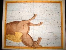 Flamsteed Atlas Coelestis 1781 LG Folio Hand Col Celestial Map. Pegasus 25