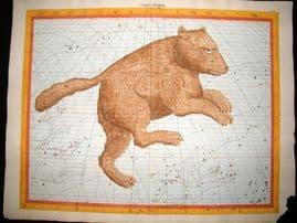 Flamsteed Atlas Coelestis 1781 LG Folio Hand Col Celestial Map. Ursa Major 19