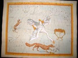 Flamsteed Atlas Coelestis 1781 LG Folio HC Celestial Map. Lyra Cygnus Lacerta 24