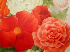 Flower Growers Guide 1896-1901