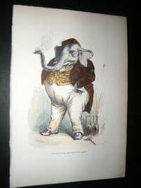 Grandville des Animaux 1842 Hand Col Print. Great Elephant