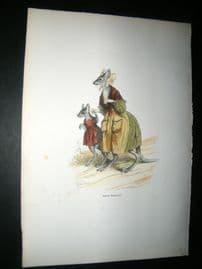 Grandville des Animaux 1842 Hand Col Print. Mother Kangaroo, Australia