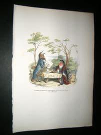 Grandville des Animaux 1842 Hand Col Print. Singing Birds