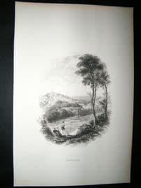 Ireland: 1860 Antique Print. Amagh