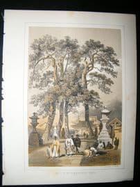 Japan Perry Expedition 1856 Antique Print. Hat-Chi-Man-Ya-Chu-Ro, Simoda