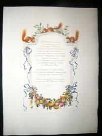 Maurice Leloir & Doucet 1904 Folio Hand Col Print. Squirrels & Fruit
