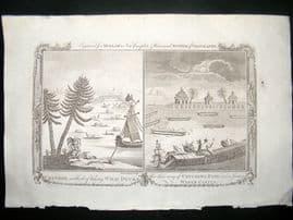 Millar 1782 Antique Print. Water Castle & Duck Hunting