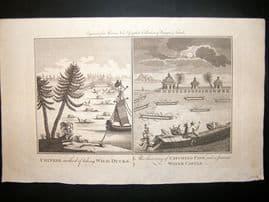 Moore C1782 Folio Antique Print. Water Castlle & Duck Hunting, China