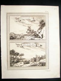Prevost C1750 Antique Print. Frog and Rat of Surinam