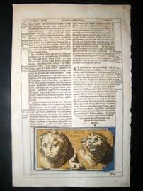 Sandrart 1675 Antique Hand Col Print. Sculpture #17