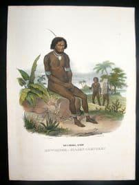 Schinz 1845 Antique Hand Col Print. Papua Natives, Pacific 30