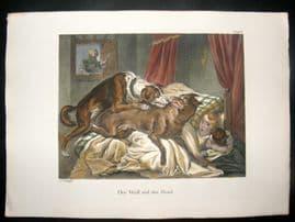 Schinz 1845 Antique Hand Col Print. Wolf & The Hound, Child 16