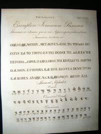 Science & Tech C1790 Antique Print. Philology 390