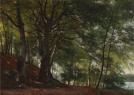 Aagaard, Carl Frederic: Forest Scene from Sorø, Denmark. Landscape Fine Art Print.