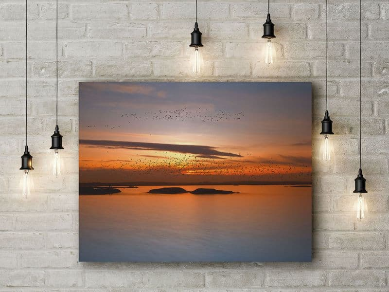 Bird Migration with Orange Sunset by Piotr Krol (Bax). Photographic Seascape and Sky Art Canvas