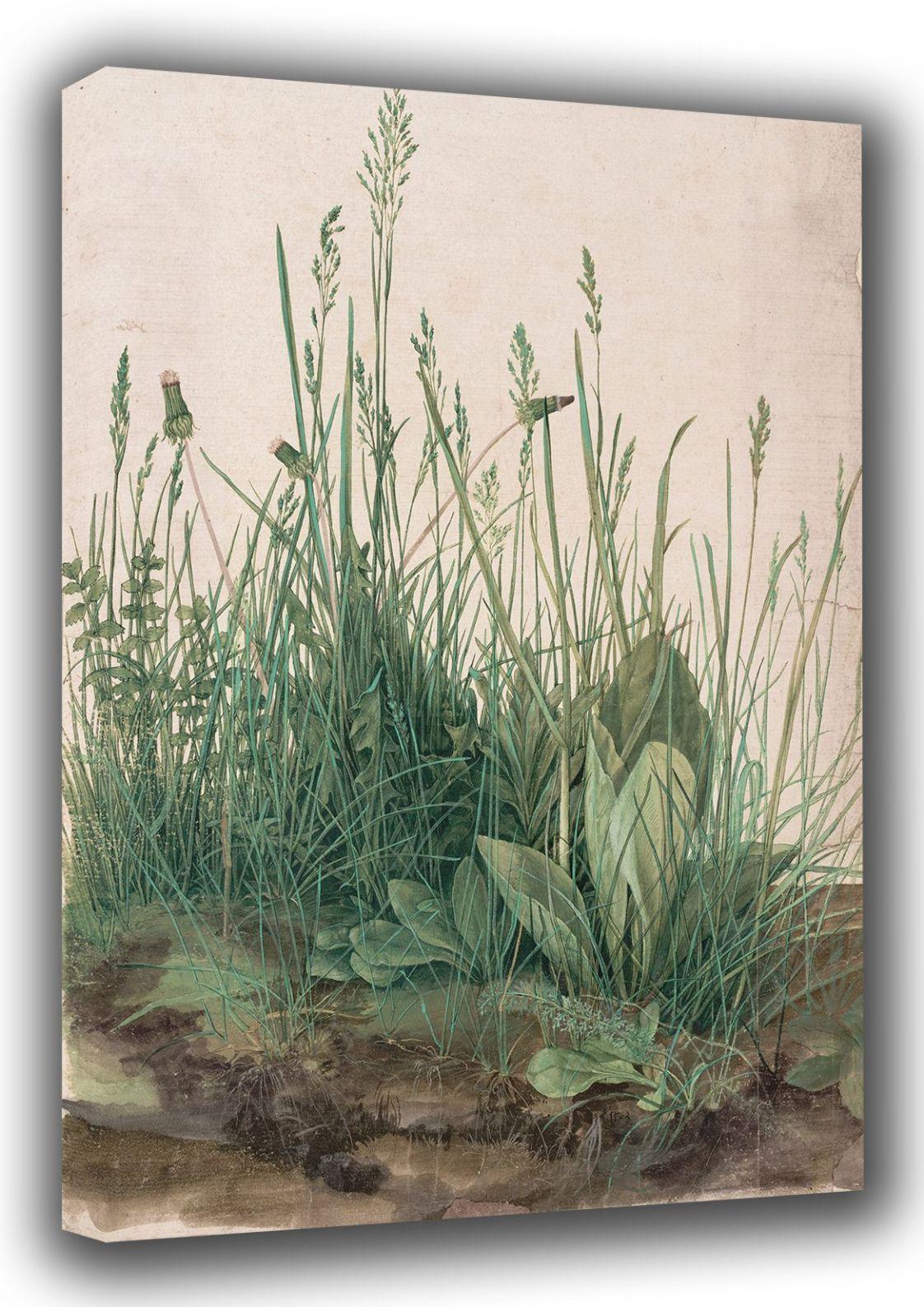 Durer, Albrecht: The Large Turf. (Realism) Botanical Fine Art Canvas. Sizes: A3/A2/A1 (001912)