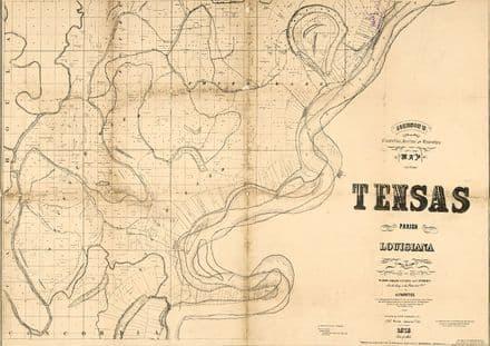 Map of Tensas Parish, Louisiana 1873 Print/Poster (5136)