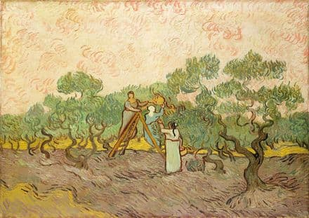 Van Gogh, Vincent: Women Picking Olives. Fine Art Print/Poster. Sizes: A4/A3/A2/A1 (004193)
