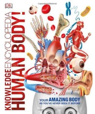 Dorling Kindersley - Knowledge Encyclopedia Human Body