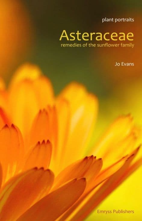 Evans, Jo - Asteraceae Remedies of the Sunflower Family
