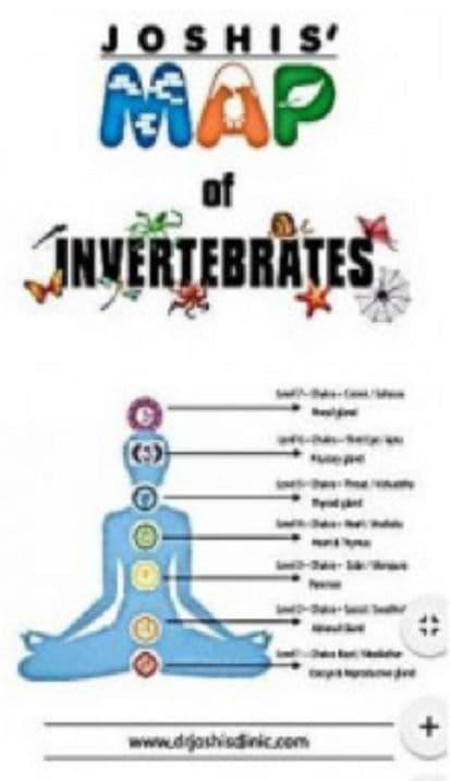Joshi, Bhawisha & Joshi, Shachindra - Joshis' MAP of Invertebrates