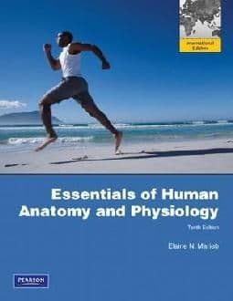 Marieb, E - Essentials of Human Anatomy and Physiology