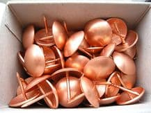 250 Large copper upholstery nails - 19mm diameter head  Metal domes craft studs