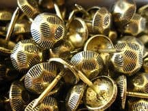 500 OXFORD HAMMERED NAILS BRASS FURNITURE STUDS 1cm brass tacks