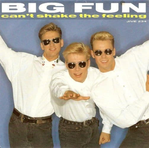 BIG FUN Can't Shake The Feeling Vinyl Record 7 Inch Jive 1989
