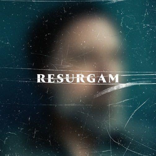FINK Resurgam Vinyl Record LP R'Coup'D 2017
