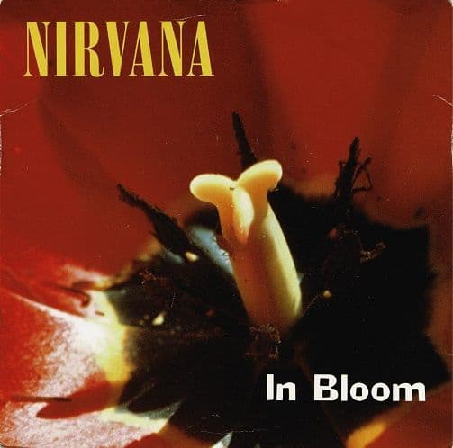 NIRVANA In Bloom Vinyl Record 7 Inch Geffen 1992