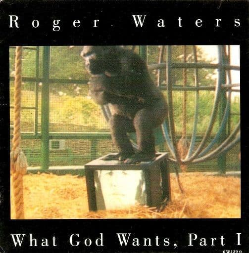 ROGER WATERS What God Wants Vinyl Record 7 Inch Dutch Columbia 1992