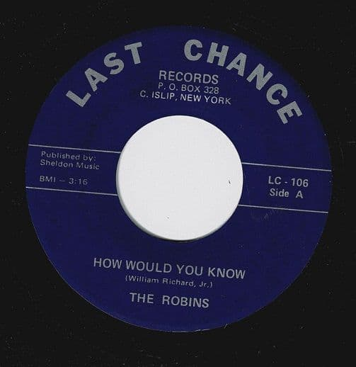 THE ROBINS How Would You Know Vinyl Record 7 Inch US Last Chance