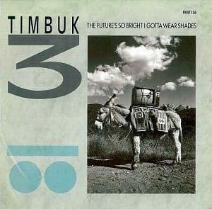 TIMBUK 3 The Future's So Bright I Gotta Wear Shades Vinyl Record 12 Inch IRS 1986