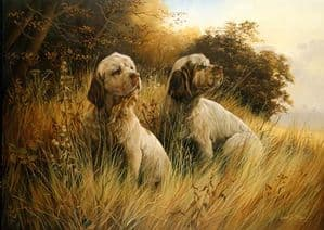 Clumber Spaniel Limited Edition Print RMLE6