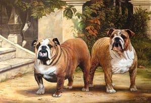 Limited Edition Bulldog Print RMLE51